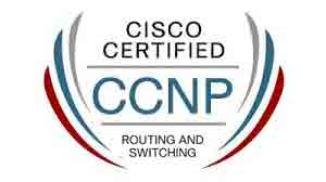 ccnp cisco certified network professional - Cisco Certified Network Engineer Sample Resume